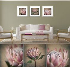 """Square Protea print set"" - 3x 50x50cm prints, white frame. Fine Art Photography as home decor."