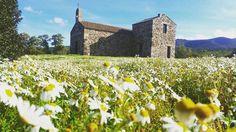 by http://ift.tt/1OJSkeg - Sardegna turismo by italylandscape.com #traveloffers #holiday | Santa Maria di Zuradili (Marrubiu). #church #campestre #marrubiu #sardegna #oristano #sardinianature #sardiniaexperience #sardinia #country #flowers #sky #mountain #montearci #igersoristano #margherite #isbangius #stones #lanuovasardegna #february #winter Foto presente anche su http://ift.tt/1tOf9XD | February 06 2016 at 01:19PM (ph andreauddein ) | #traveloffers #holiday | INSERISCI ANCHE TU offerte…