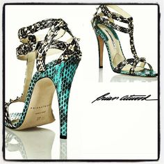 Gladiator lux. The Brian Atwood way!