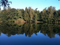 Søllerød Park 15, 1. 19., 2840 Holte - Bedste beliggenhed i Søllerød park med direkte udkig til sø og skov. #solgt #selvsalg