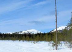 Mountains of Pyhätunturi, Lapland Finland