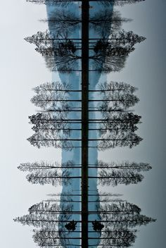 Loving these sideways pics.  I would like a print of this, sideways it looks like something related to the body...