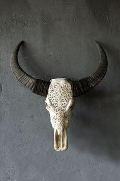 skull carving | antler mout