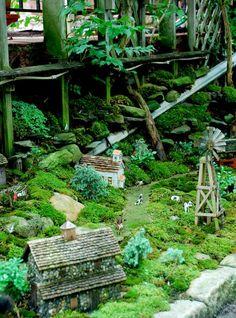 Norwood Avenue moss garden a Buffalo Garden Walk