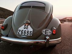 1956 VW Beetle Oval Window