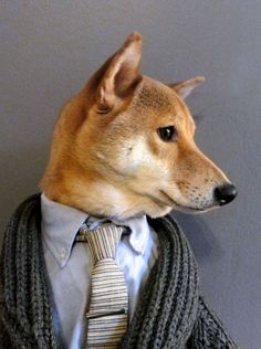 Menswear Dog (a three-year-old Shiba Inu from, of course, NYC) models dapper menswear ensembles, providing both fashion inspiration and (hopefully?) daily doses of squee.