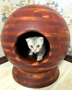 Дизайнерская будка для кошки.