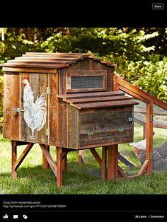 Great little chicken house
