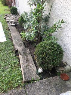 Gartenweg vorher. #gartenblog #gartenweg #garten Stepping Stones, Outdoor Decor, Plants, Flagstone, Lawn, Scenery, Stones, Stair Risers, Planters