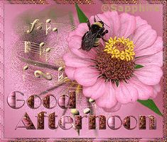 good afternoon images - Google Search