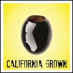 California Ripe Olives are grown right here in California!