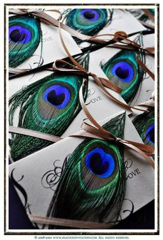Peacock-inspired I Melbourne Zoo Events loves! Chic Wedding, Wedding Details, Our Wedding, Dream Wedding, Peacock Theme, Peacock Wedding, Peacock Colors, Invitation Cards, Wedding Invitations