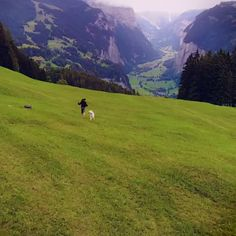 The famous village of Lauterbrunnen, surrounded by nature 🍃 Switzerland. Tag to get featured 🌎 💙Video by 📸 check tag——> Beautiful Photos Of Nature, Beautiful Places To Travel, Cool Places To Visit, Amazing Nature, Nature View, Travel Aesthetic, Dream Vacations, Adventure Travel, Adventure Time