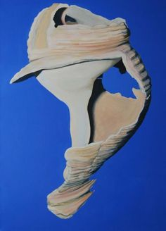 Buy Whelk Shell (inspired by O'Keeffe), Acrylic painting by Eleanore Ditchburn on Artfinder. Discover thousands of other original paintings, prints, sculptures and photography from independent artists.