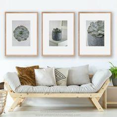 Cactus wall art contemporary photography - digital print - https://etsy.me/2KSdPwe #cactus #photography #succulents #desert #plants #botanical #homedecor #interiors #southwestern #cacti #interiordesign #minimalist #contemporary #style #inspiration #urbanrusticnomad #grey #shadesofgrey #wallart #digitalprint #print #printable