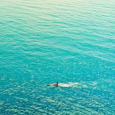 the sea always filled her with longing, but for what she was never quite sure