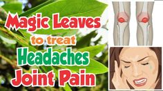 Headache and Joint pain treatment
