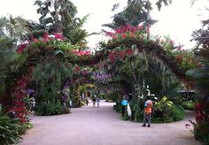 Orchid Arch | Jurong Hill Singapore | Jurong Bird Park. http://worldlandscapearchitect.com/orchid-arch-jurong-hill-singapore-jurong-bird-park/