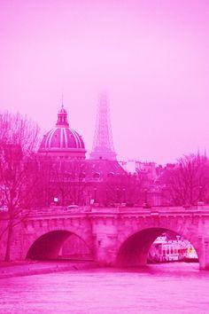 The Alexandre XIII Bridge  Paris in Pink