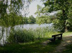 South Weald Park