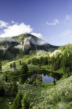 Mountain Lake Reflection - Wyoming