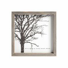 Bild Baum Pauwlonia-Holz weiß ca B:24 x L:24 cm