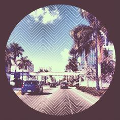 Downtown Miami: On the road.