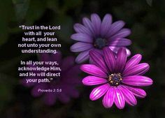 Proverbs 3:5-6 Praise the Lord