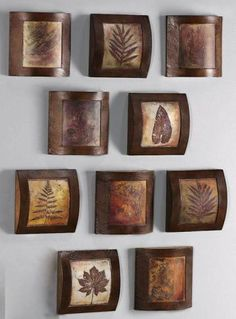 Wooden Fossil Collage Wall Art