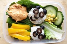 Panda lunchbox friends