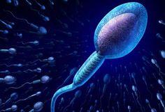 Lo que no sabías del semen y los espermatozoides