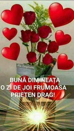 Good Morning, Armadillo, Buen Dia, Bonjour, Good Morning Wishes