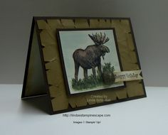 Masculine card done with Stampin' Up! Walk in the Wild and Something You Said Stamp Sets.  Simple aged background technique... See more at http://lindasstampinescape.com