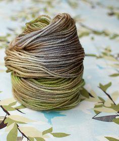 070414 willow ~Three Irish Girls: Willow Bark