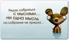 Мысли. ..