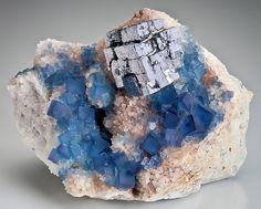 Incredible specimen of Blue Fluorite with a mirror-like Galena cube sitting atop Quartz matrix.Blanchard Mine, New Mexico.