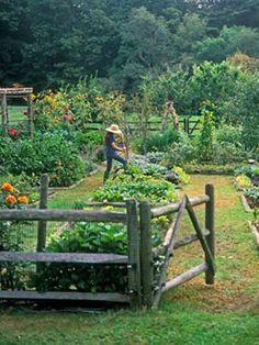 Potager garden - Remarkable Large Backyard Garden Tips Ideas – Potager garden Big Garden, Water Garden, Dream Garden, Garden Tips, Garden Pool, Garden Bed, Spring Garden, Cottage Gardens, Farm Gardens