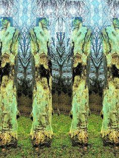 'Baumskulpturen' von Martin Blättner bei artflakes.com als Poster oder Kunstdruck $15.68