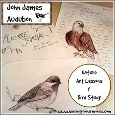 John James Audubon Nature Notebooking and Bird Study John James Audubon: Artisit Study , Nature Art Lessons and Bird Study Nature Activities, Science Activities, Inspired Learning, John James Audubon, Science Notebooks, Environmental Education, Forest School, Nature Journal, Nature Study