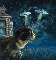 I always knew cats were aliens.