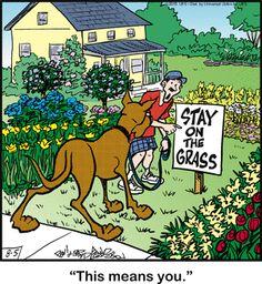 Marmaduke Comic Strip, August 05, 2015     on GoComics.com