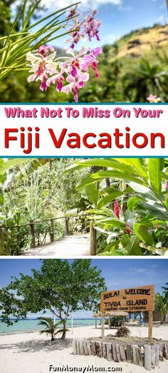 Fiji Vacation - Looking for the best things to do on your Fiji vacation? From island excursions to tropical gardens there's so much to see in Fiji that it may be hard to narrow it down! Here's what do to in Fiji besides the beaches! Family Vacation Destinations, Disney Vacations, Disney Trips, Travel Destinations, Disney Travel, Travel With Kids, Family Travel, Tropical Islands To Visit, Beautiful Tropical Fish