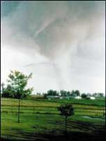 Several States hit by tornadoes... 170 twisters in 1 day and 300 killed. Later in the year Joplin Missouri was hit...161 were killed!