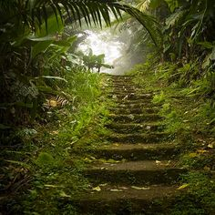 Saba. The real stairway to heaven.