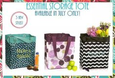 Check out the three new designs for the Essential Storage Totes...get this tote for $5 for every $35 you spend only in the month of July!  Contact me for more details.