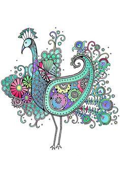 Peacock by Hannah Davies, an award winning Welsh based freelance designer & illustrator.