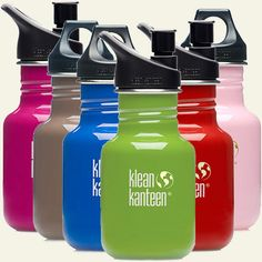 Klean Kanteen 12 oz Colorful Stainless Steel Reusable Bottle