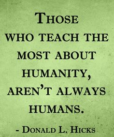 """Those who teach the most about humanoty, aren't always humans"" #dog #saying #love 