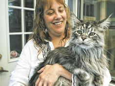 Maine Coon Cat Robin Henderson of Reno, Nev., holds her cat, Stewie, at her home on July 1, 2009. Stewie has been certified as the world's longest by the Guinness Book of World Records.(Photo: Andy Barron, Reno Gazette Journal)