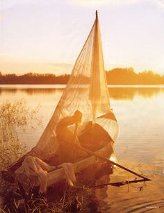 Golden sails.